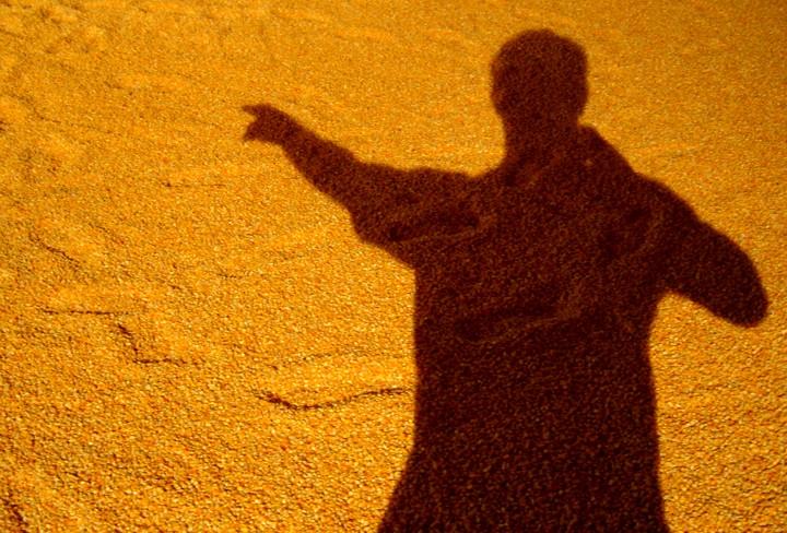 A Sombra De Pedro Curava? Imagem