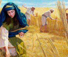 Quem Foi Rute Na Bíblia Sagrada? Sua História e Lições
