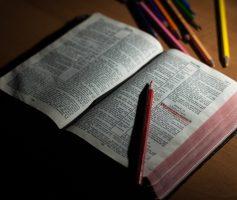 Como Estudar a Bíblia Para Pregar? Guia Para Iniciantes!