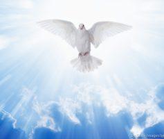 Como Ser Cheio Do Espírito Santo: As Principais Dicas Para Todo Cristão!